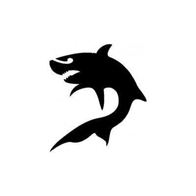 11. Requin